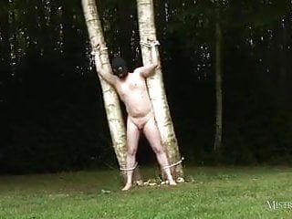 Dominatrix ties villein to tree and whips him in advance of pumping bbc